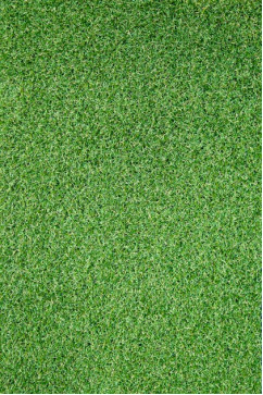 RIVIERA RIVIERA 16148 Ковролин под молодую траву. Используется покрытием в кафе, спортплощадках, террасах.